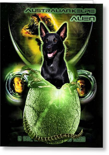 Kelpie Paintings Greeting Cards - Australian Kelpie Art Canvas Print Greeting Card by Sandra Sij