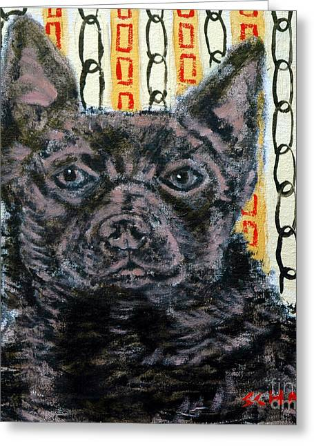 Kelpie Paintings Greeting Cards - Australian Kelpie Dog  Greeting Card by Jay  Schmetz