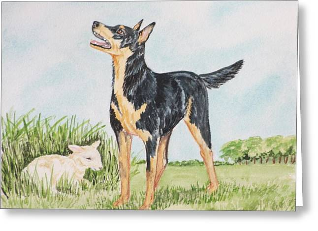 Kelpie Paintings Greeting Cards - Australian Kelpie Greeting Card by Heather Anderson