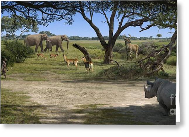 Recently Sold -  - Rhinoceros Greeting Cards - Australopithecus Afarensis Landscape Greeting Card by Mauricio Anton