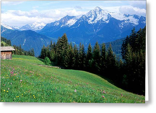 Snow Capped Greeting Cards - Austria, Zillertaler, Cabin Greeting Card by Panoramic Images