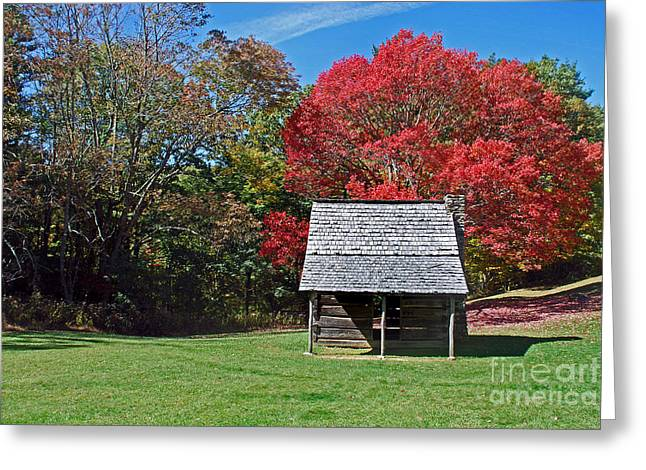 Log Cabin Art Greeting Cards - Autum For A Mountain Home Greeting Card by Skip Willits