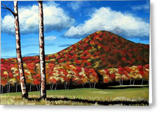 Cushion Greeting Cards - Autum Hill Greeting Card by Michael Dillon