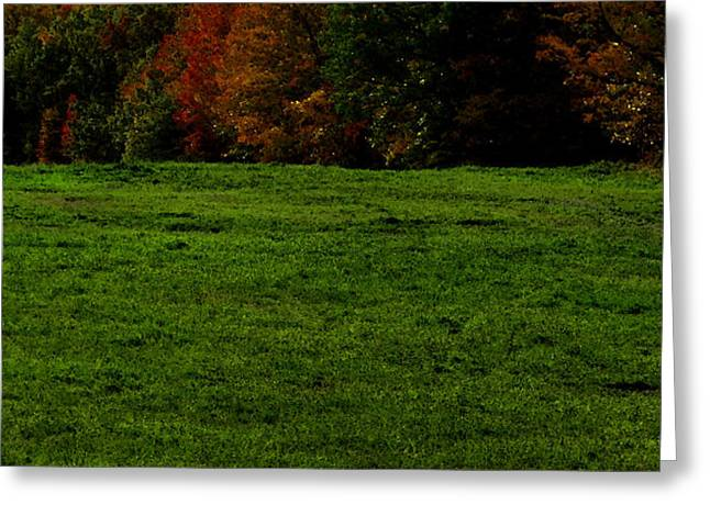 Autum Abstract Greeting Cards - Autum Trees on the Hill WC 2  Greeting Card by Lyle Crump