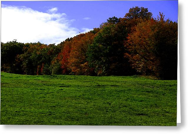 Autum Abstract Greeting Cards - Autum Trees on the Hill WC  Greeting Card by Lyle Crump