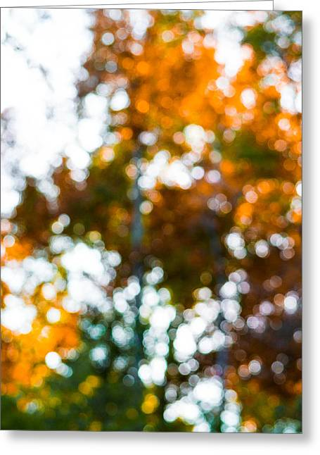 Autumn Photographs Greeting Cards - Autumn Abstract Greeting Card by Shelby  Young