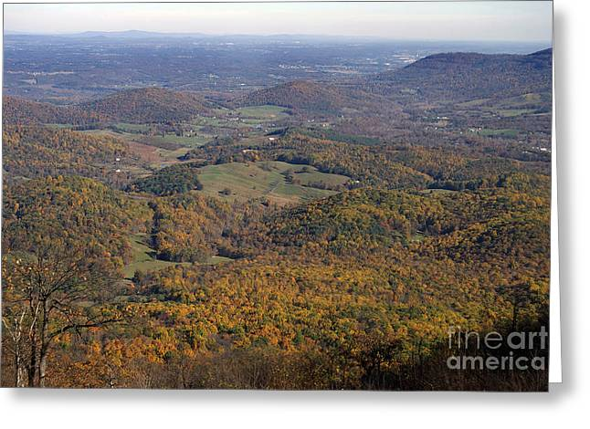 Scenic Tours Greeting Cards - Autumn Across The Shenandoah Greeting Card by Skip Willits