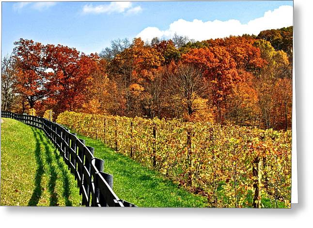 Fall Vineyards Greeting Cards - Autumn Amish Vineyard Greeting Card by Frozen in Time Fine Art Photography