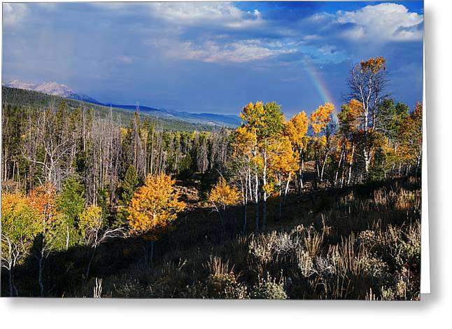 Aspens In Fall Greeting Cards - Autumn and Rainbow Greeting Card by Vishwanath Bhat