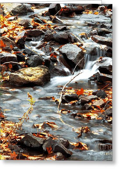 Rush-bed Greeting Cards - Autumn around the Silver River Falls Greeting Card by Optical Playground By MP Ray