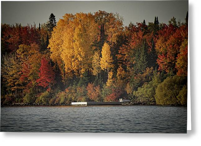 Boat Slip Greeting Cards - Autumn Arrives to Buffalo Bay Greeting Card by Thomas Young