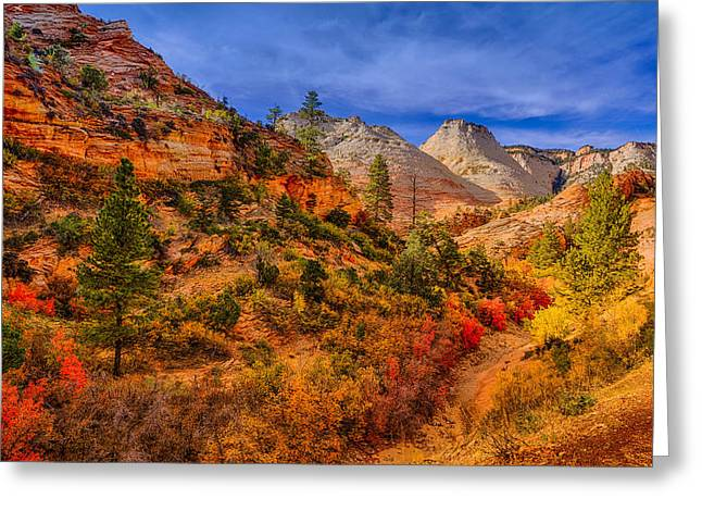Landscape Art Greeting Cards - Autumn Arroyo Greeting Card by Greg Norrell
