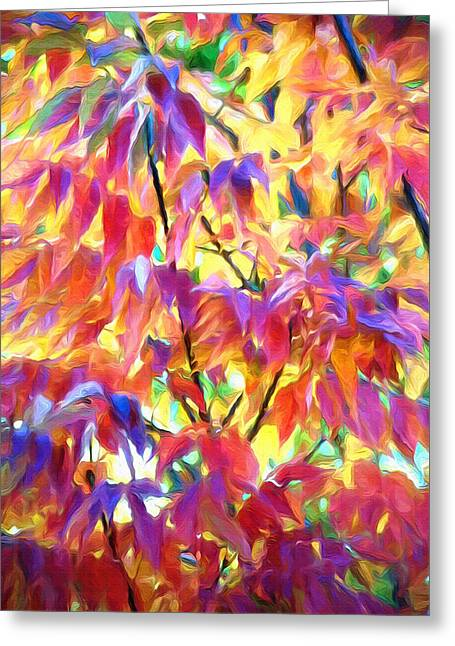 Turning Leaves Mixed Media Greeting Cards - Autumn Ash Tree 1 - Fall Paint Greeting Card by Steve Ohlsen