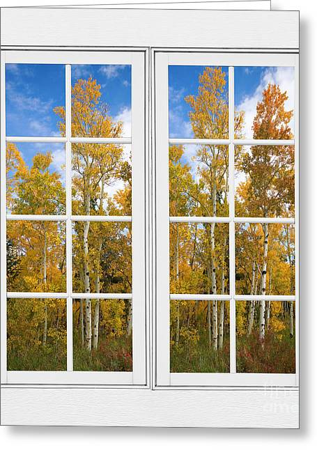 Room With A View Greeting Cards - Autumn Aspen Forest White Window Frame View Greeting Card by James BO  Insogna