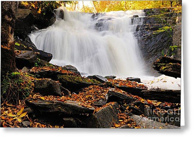 Canoe Waterfall Greeting Cards - Autumn at Cattyman Falls Greeting Card by Larry Ricker