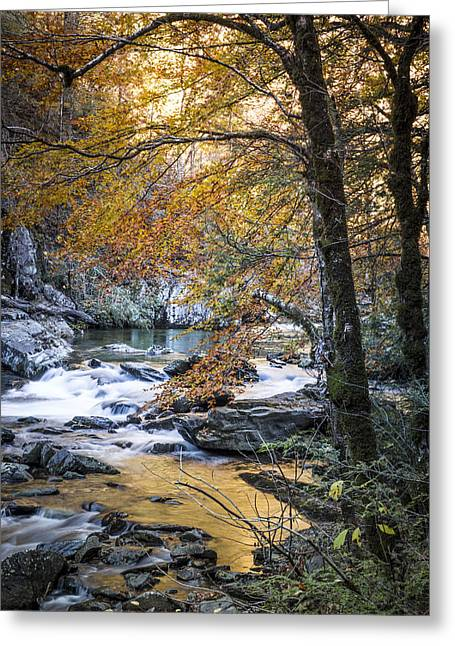 Reflections In River Greeting Cards - Autumn at Citico Creek Greeting Card by Debra and Dave Vanderlaan