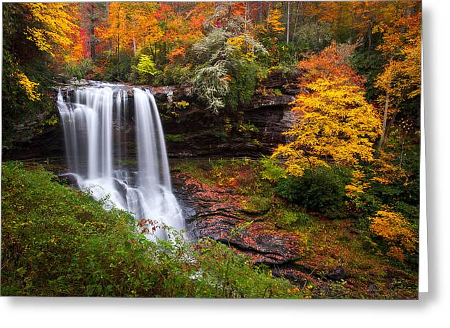 Yellow Trees Greeting Cards - Autumn at Dry Falls - Highlands NC Waterfalls Greeting Card by Dave Allen