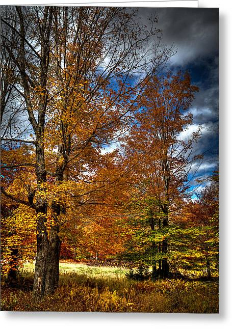 Hdr Landscape Greeting Cards - Autumn at Mc Cauley Mountain Greeting Card by David Patterson