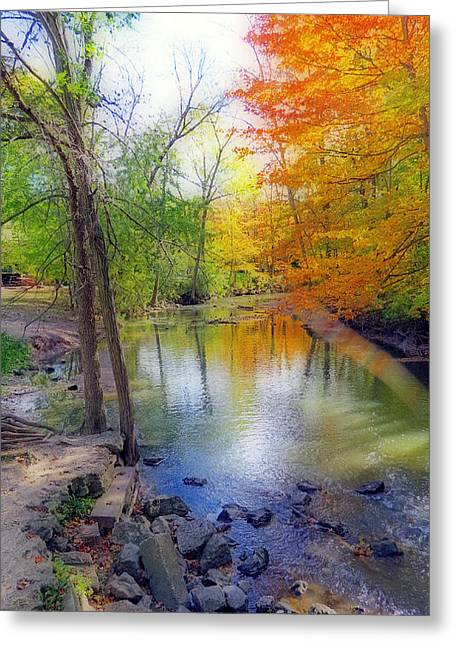 Seasonal Prints Rural Prints Greeting Cards - Autumn At Petrifying Springs Greeting Card by Kay Novy