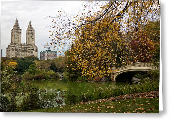Newyorkcity Greeting Cards - Autumn at San Remo Greeting Card by Cornelis Verwaal