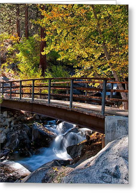 Fall Yellow Greeting Cards - Autumn at the Bridge Greeting Card by Cat Connor