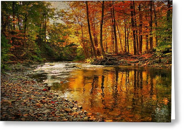 Buttermilk Falls Greeting Cards - Autumn at the Creek Greeting Card by Janet Lee