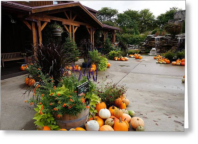 Indiana Autumn Greeting Cards - Autumn at the winery Greeting Card by Chuck Johnson