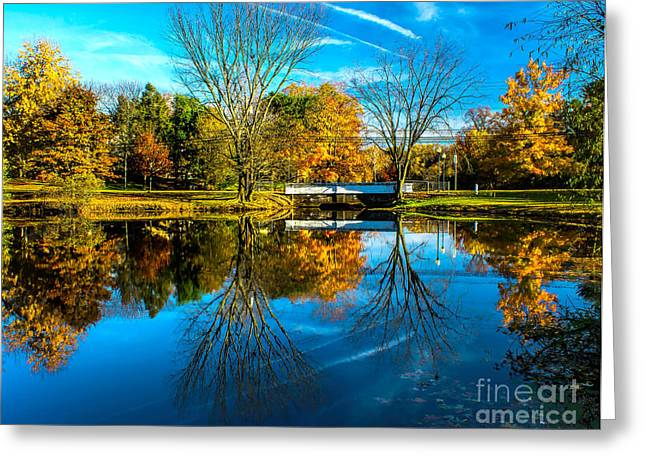 Woodbury Greeting Cards - Autumn at the Woodbury Lake Greeting Card by Nick Zelinsky