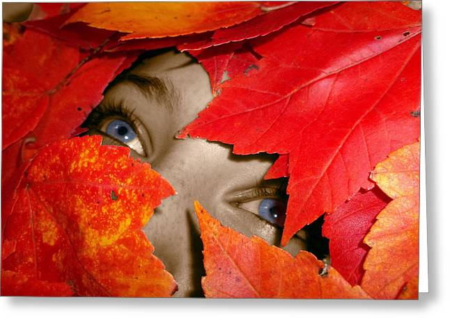 Indiana Autumn Greeting Cards - Autumn Awakened Greeting Card by Johnna Correll