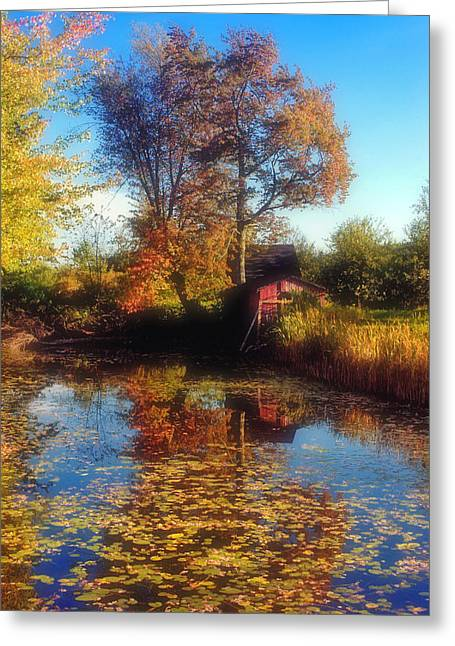 Lilly Pad Greeting Cards - Autumn Barn Greeting Card by Joann Vitali