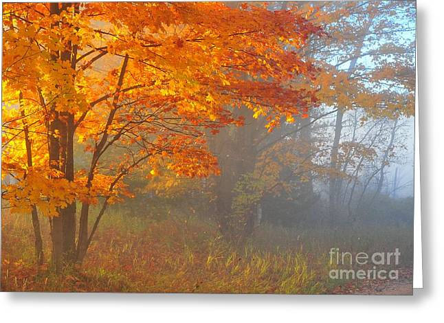 Autumn Beacon In The Fog Greeting Card by Terri Gostola