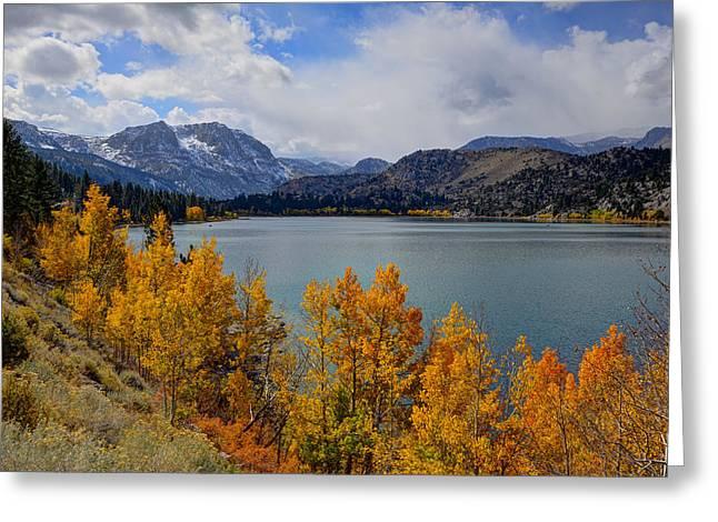 Beauty Mark Photographs Greeting Cards - Autumn Beauty at June Lake Greeting Card by Mark Whitt