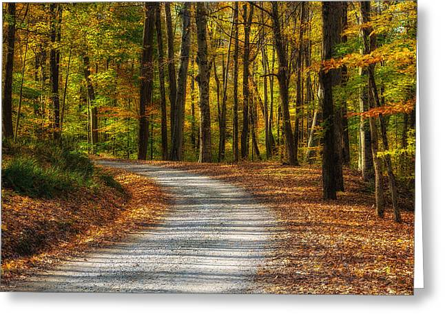 Autumn Beauty Greeting Card by Dale Kincaid