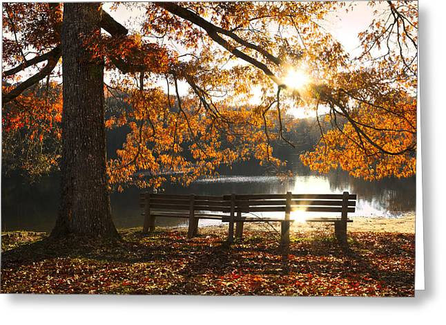 Autumn Beauty Greeting Card by Debra and Dave Vanderlaan