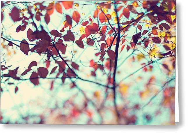 Autumn Beauty Greeting Card by Kim Fearheiley