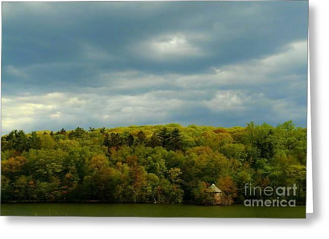 Autumn Beginning Greeting Card by Avis  Noelle
