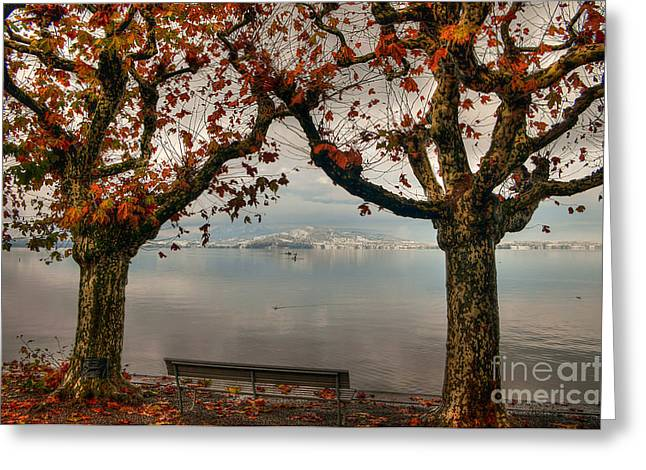 Caroline Pirskanen Greeting Cards - Autumn Bench Greeting Card by Caroline Pirskanen
