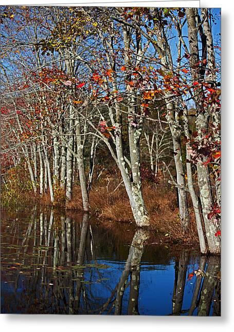 Autumn Blue Greeting Card by Karol Livote