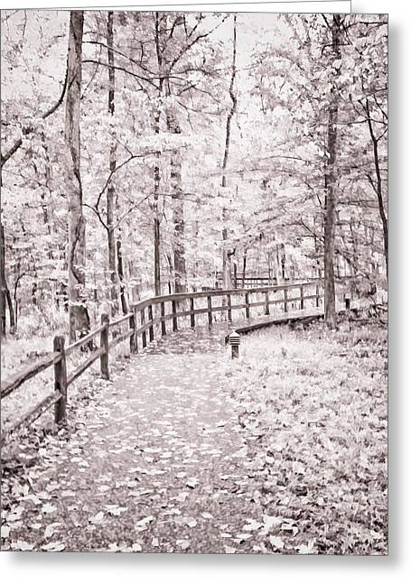 Split Rail Fence Greeting Cards - Autumn at Mammoth Cave National Park b/w Greeting Card by Greg Jackson