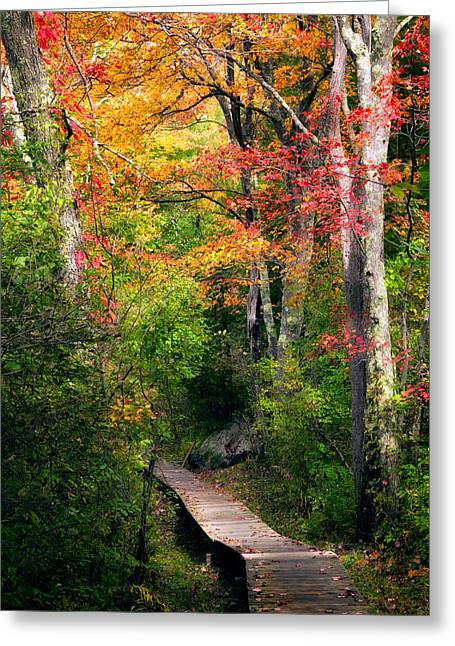 Southern New England Greeting Cards - Autumn Boardwalk Greeting Card by Bill  Wakeley