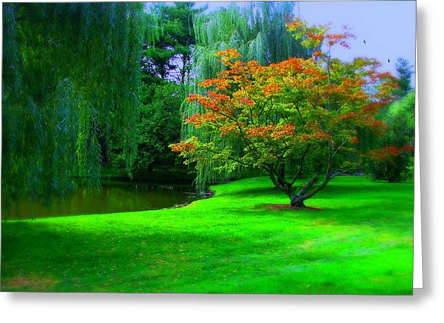 Westchester County Greeting Cards - Autumn Bound Greeting Card by Diana Angstadt
