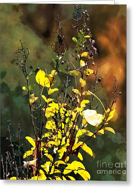 Rural Landscapes Mixed Media Greeting Cards - Autumn Bouquet Greeting Card by Gerlinde Keating - Keating Associates Inc