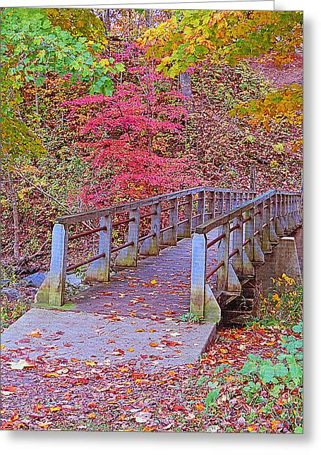 Petrifying Springs Greeting Cards - Autumn Bridge Greeting Card by Kay Novy
