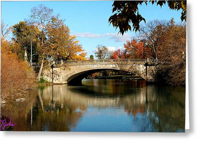 Battle Of Trenton Greeting Cards - Autumn Bridge Greeting Card by Michael Rucker