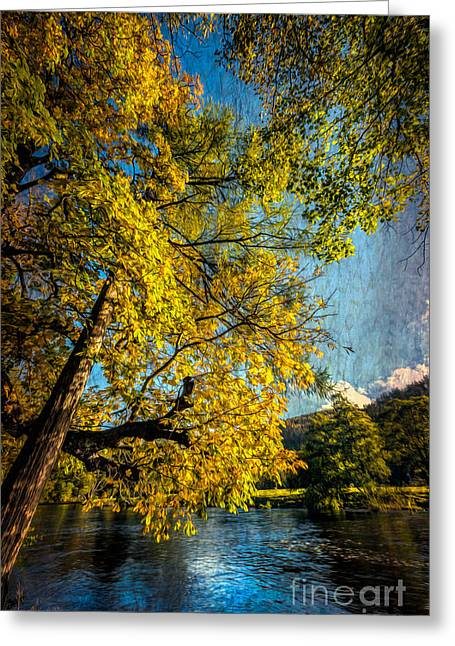 Autumn By The River Greeting Card by Adrian Evans