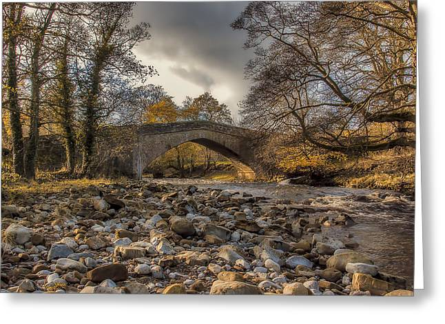 Packhorse Greeting Cards - Autumn by the River Greeting Card by Trevor Kersley