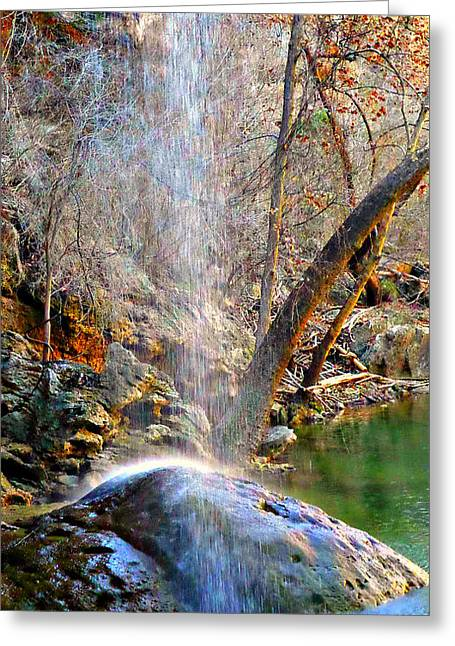 Hamilton Pool Greeting Cards - Autumn Calls at Dusk Greeting Card by CJ Anderson