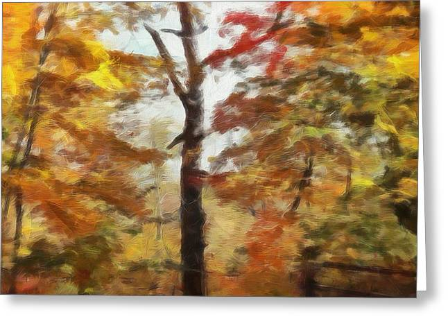 Bare Trees Mixed Media Greeting Cards - Autumn Canvas Greeting Card by Dan Sproul