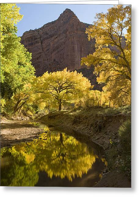 Photos Of Autumn Greeting Cards - Autumn Canyon De Chelly Greeting Card by Tom Vezo