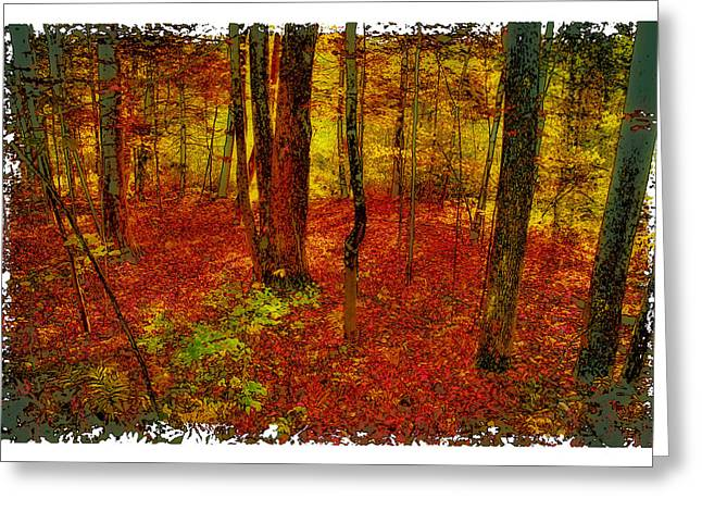 Surreal Landscape Greeting Cards - Autumn Carpet Greeting Card by David Patterson
